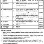 Home Department KPK Jobs CTSP Application Form